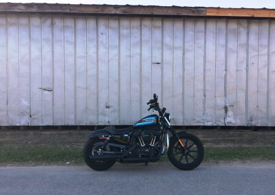 picture of Harley-Davidson Sportster Iron 1200