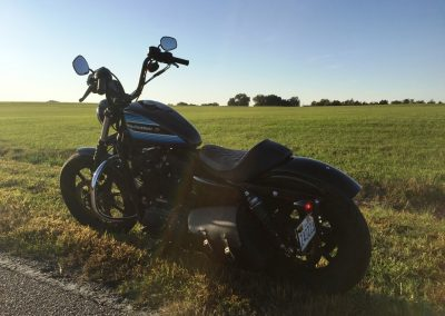 picture of Harley Davidson Sportster Iron 1200