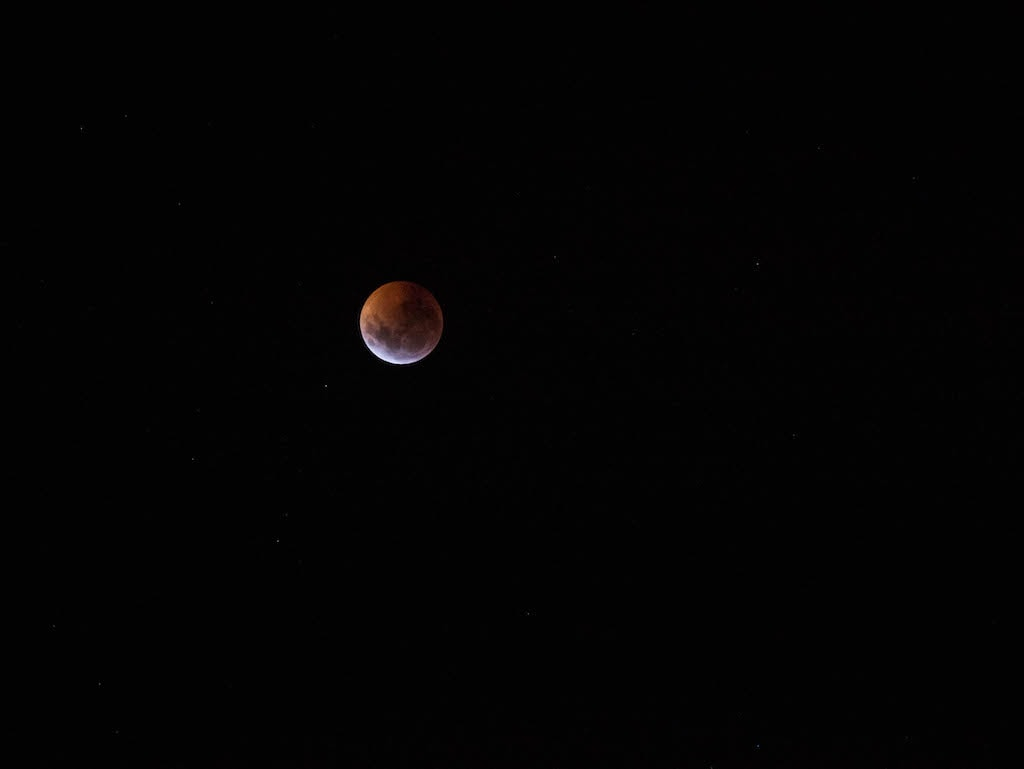picture of Blood Wolf Moon