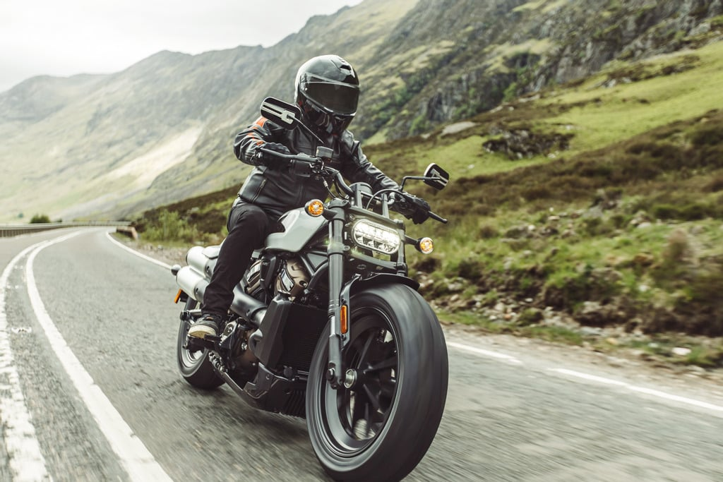 picture of 2021 Harley Davidson Sportster S